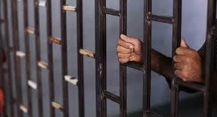 صورة السجن 7 سنوات لطالب جامعي غدر بعمه وأرداه قتيلا